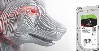 Test: Seagate Iron Wolf Pro 4TB (Video)