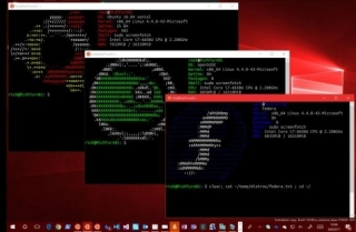 Linux-on-Windows ove jeseni izlazi iz bete