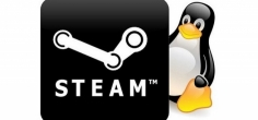 Steam Play ažuriranje donosi Windows igre na Linux